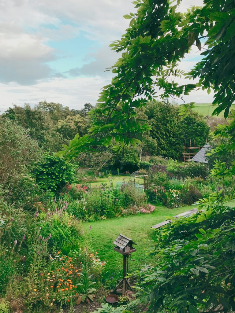 View of the gorgeous garden